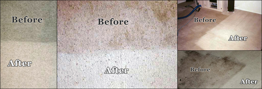 How To Wash The Carpet Ideas